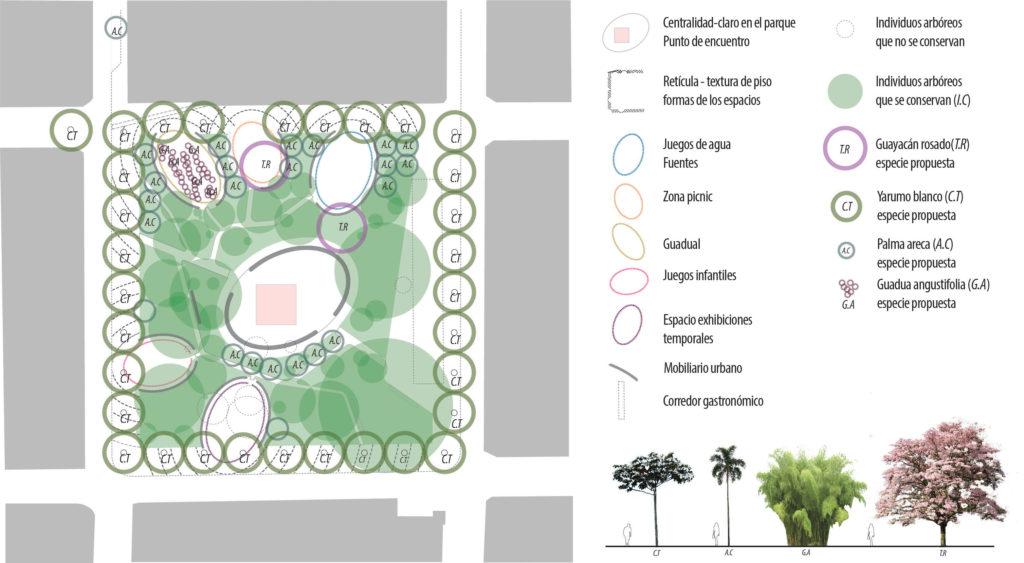 Zonificación y Vegetación Plaza Nueva