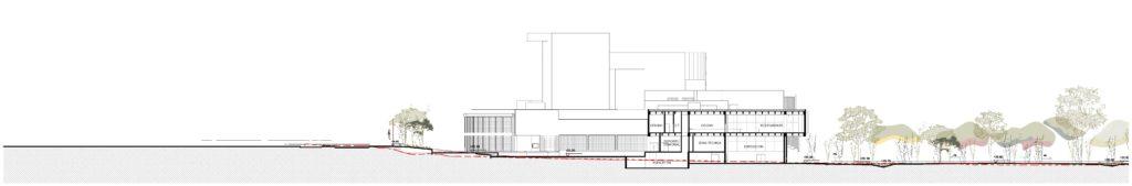 Corte F - Transversal exposiciones